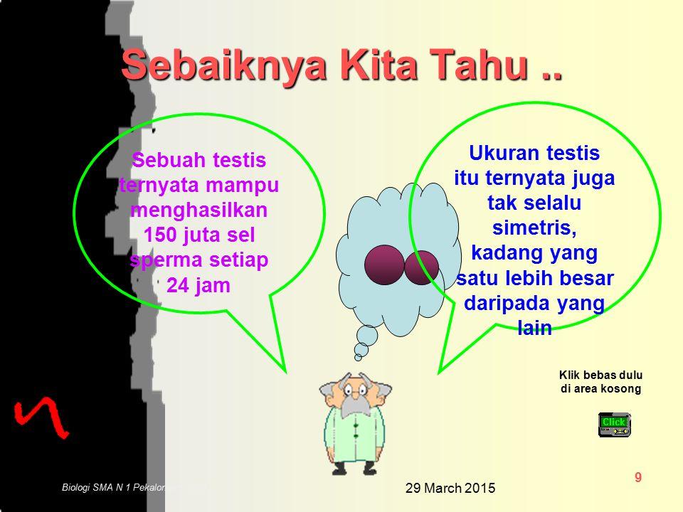 29 March 2015 9 Biologi SMA N 1 Pekalongan 2006 Sebaiknya Kita Tahu..
