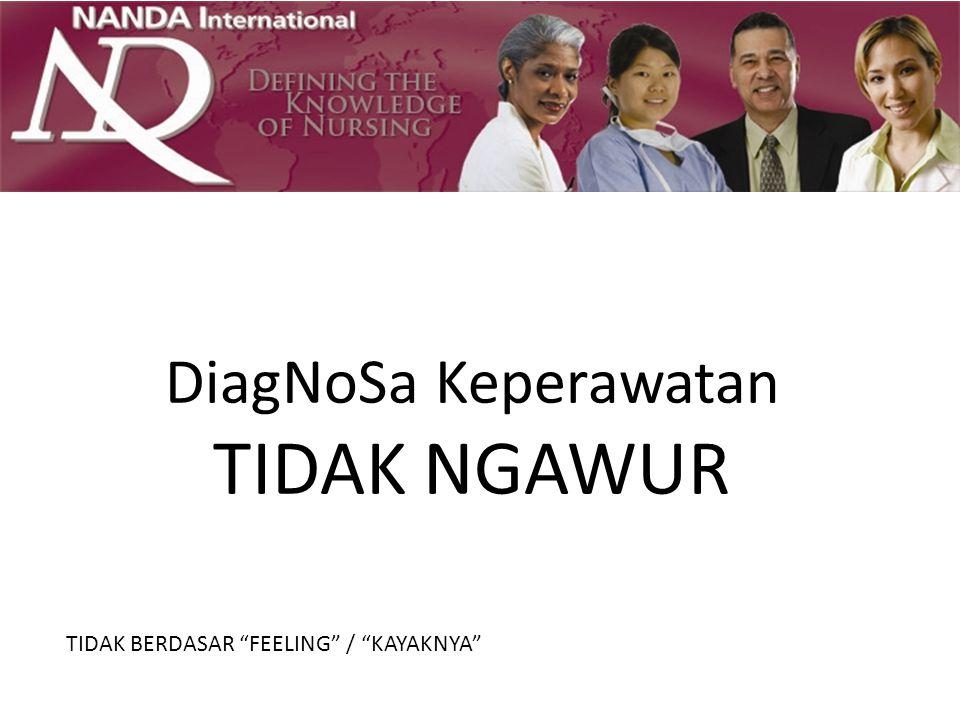 NANDA-I Axes Axis 1 The Diagnostic Concept Page.