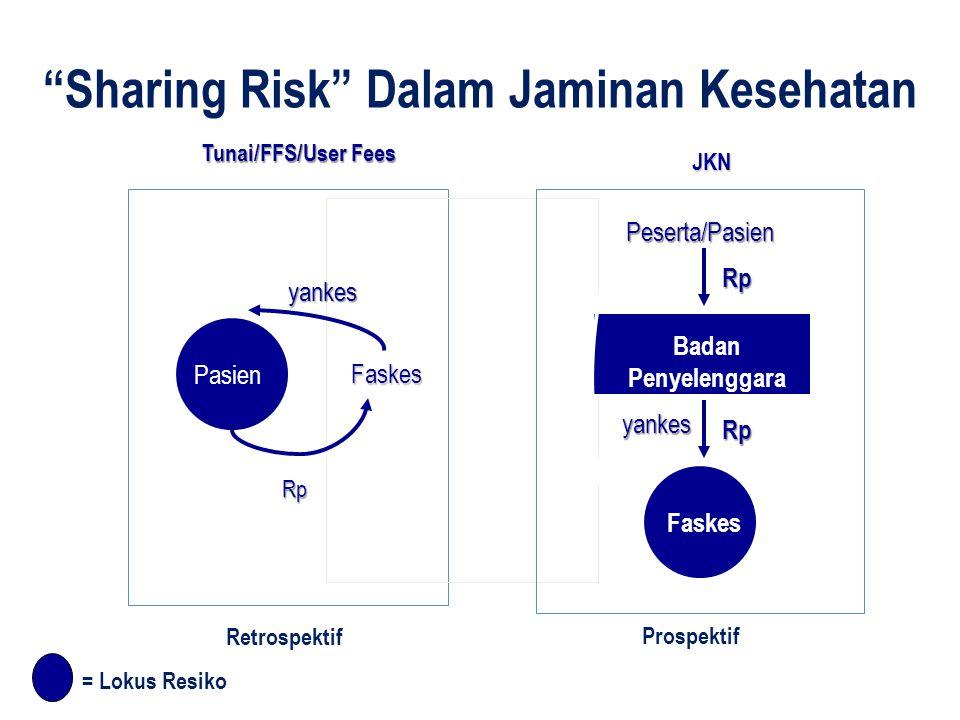 Tunai/FFS/User Fees JKN yankes Faskes Pasien Rp Peserta/Pasien Badan Penyelenggara Faskes yankes Rp Rp = Lokus Resiko Source: W.