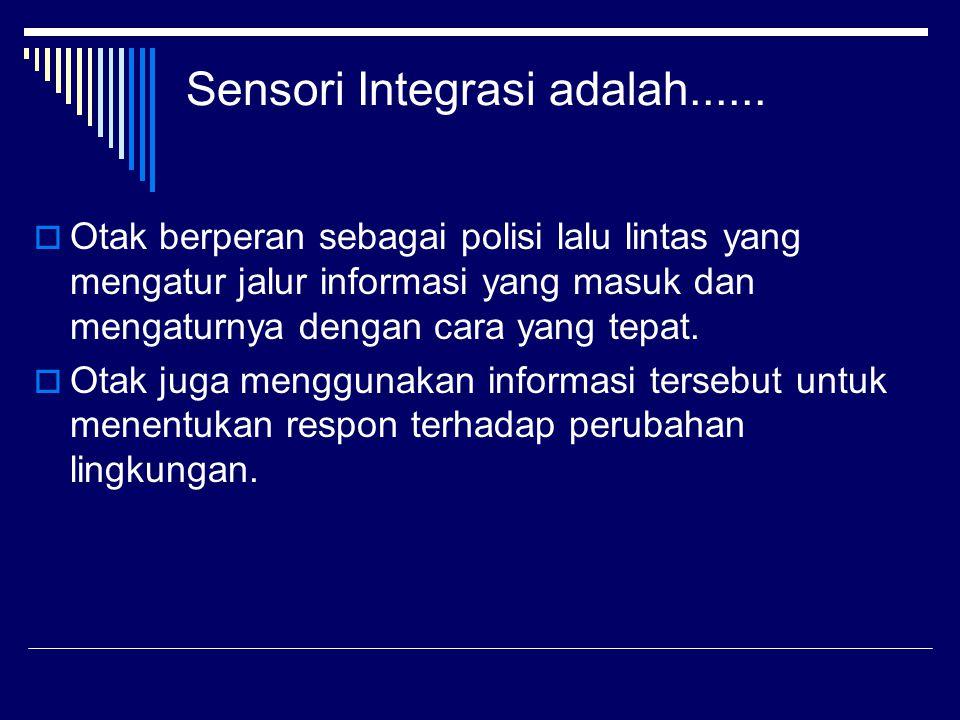 Sensori Integrasi adalah......  Otak berperan sebagai polisi lalu lintas yang mengatur jalur informasi yang masuk dan mengaturnya dengan cara yang te