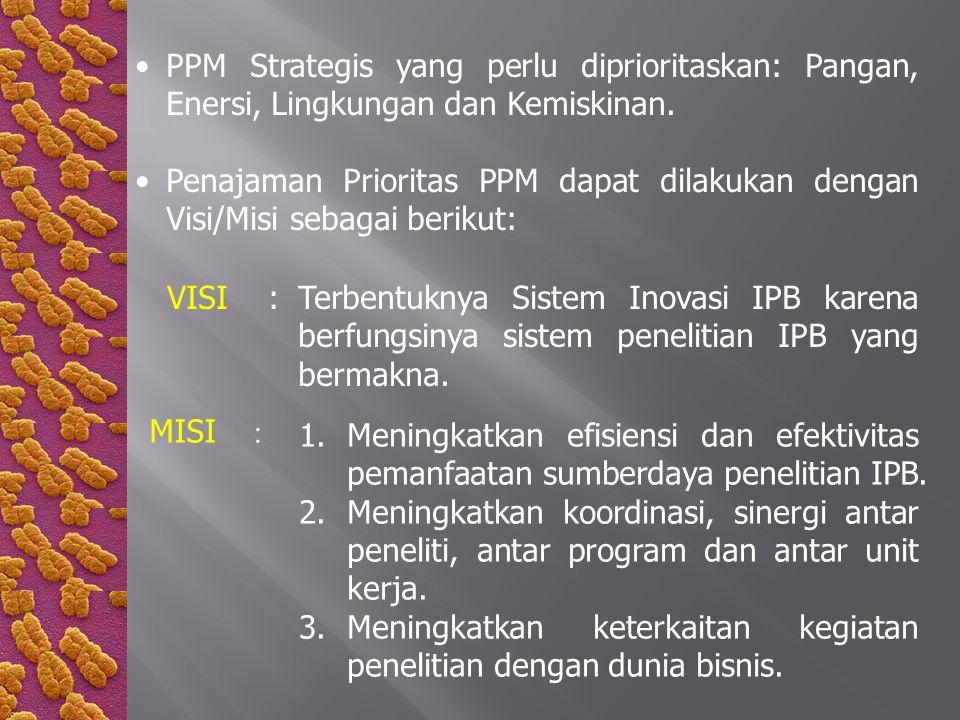 PPM Strategis yang perlu diprioritaskan: Pangan, Enersi, Lingkungan dan Kemiskinan. Penajaman Prioritas PPM dapat dilakukan dengan Visi/Misi sebagai b