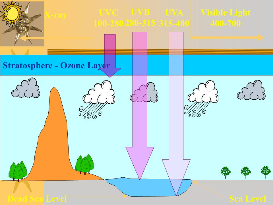 Tindakan mandiri 1.Tentukan riwayat nyeri misal; lokasi nyeri, frekuensi, durasi dan intensitas(skala 0-10 dan tindakan penghilang yang digunakan.