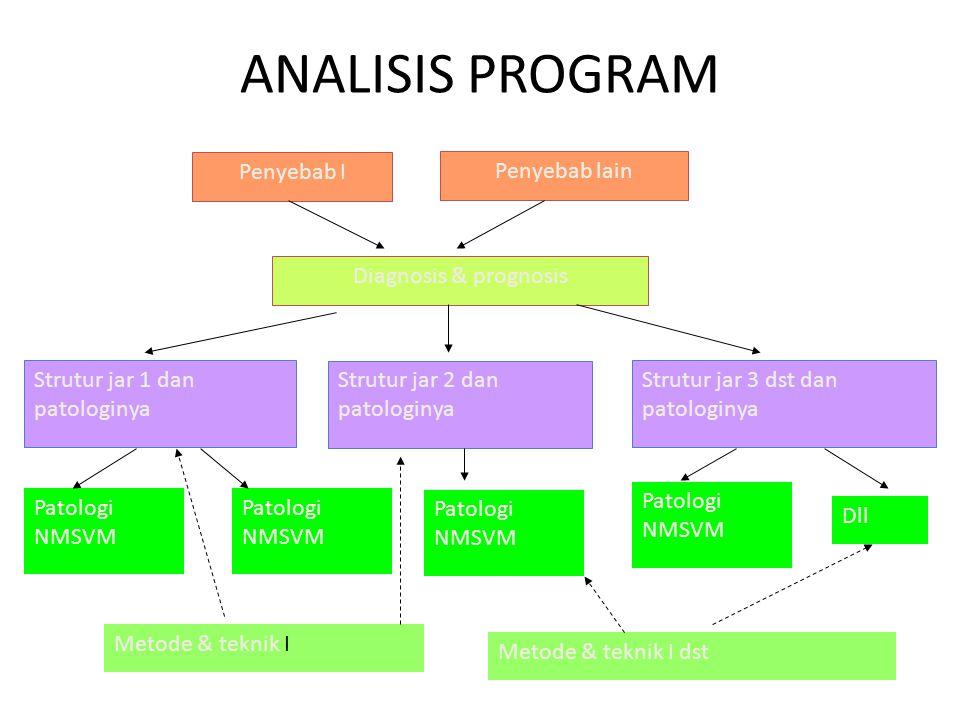 ANALISIS PROGRAM Diagnosis & prognosis Penyebab I Penyebab lain Strutur jar 1 dan patologinya Strutur jar 2 dan patologinya Strutur jar 3 dst dan pato