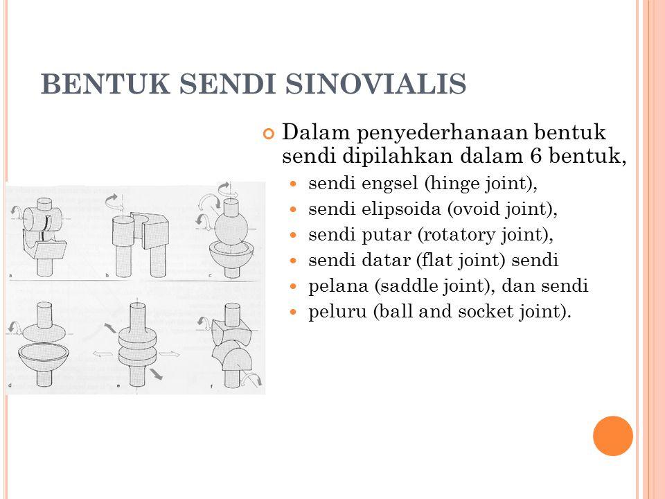 BENTUK SENDI SINOVIALIS Dalam penyederhanaan bentuk sendi dipilahkan dalam 6 bentuk, sendi engsel (hinge joint), sendi elipsoida (ovoid joint), sendi