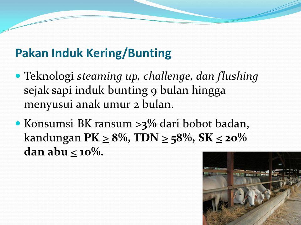 Pakan Induk Kering/Bunting Teknologi steaming up, challenge, dan flushing sejak sapi induk bunting 9 bulan hingga menyusui anak umur 2 bulan. Konsumsi