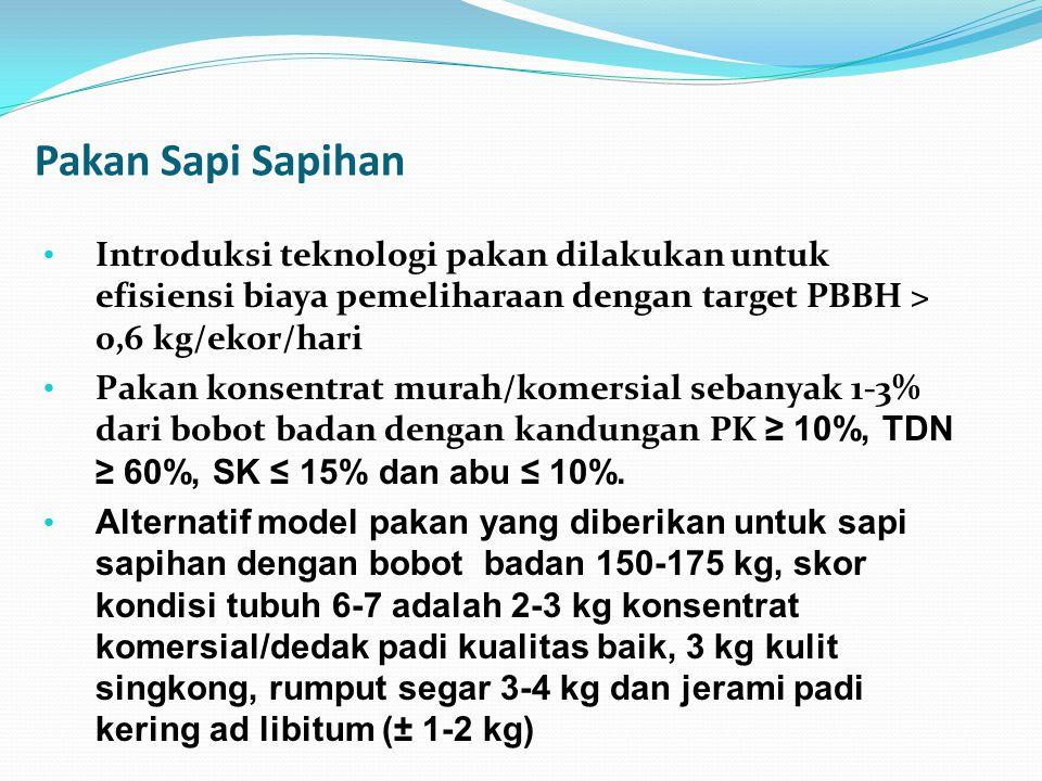 Pakan Sapi Sapihan Introduksi teknologi pakan dilakukan untuk efisiensi biaya pemeliharaan dengan target PBBH > 0,6 kg/ekor/hari Pakan konsentrat mura