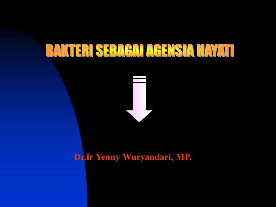 Dr.Ir Yenny Wuryandari, MP.