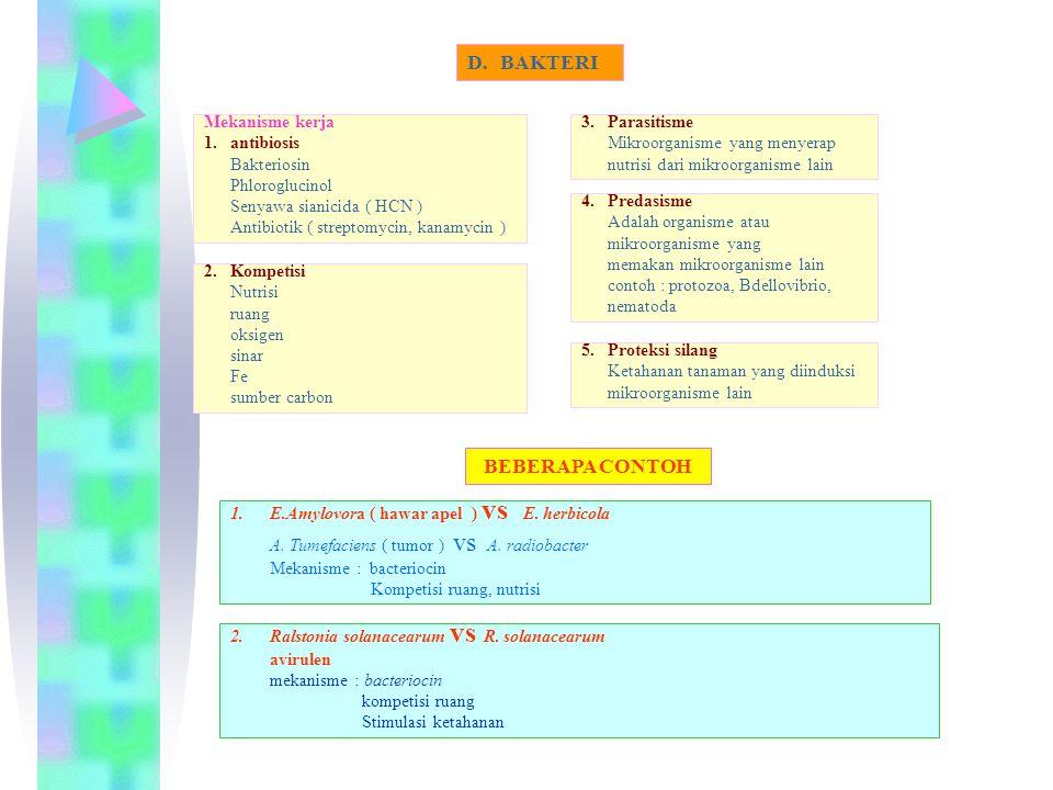 4.Predasisme Adalah organisme atau mikroorganisme yang memakan mikroorganisme lain contoh : protozoa, Bdellovibrio, nematoda D.BAKTERI Mekanisme kerja 1.antibiosis Bakteriosin Phloroglucinol Senyawa sianicida ( HCN ) Antibiotik ( streptomycin, kanamycin ) 2.Kompetisi Nutrisi ruang oksigen sinar Fe sumber carbon 3.Parasitisme Mikroorganisme yang menyerap nutrisi dari mikroorganisme lain 5.Proteksi silang Ketahanan tanaman yang diinduksi mikroorganisme lain 1.E.Amylovora ( hawar apel ) vs E.