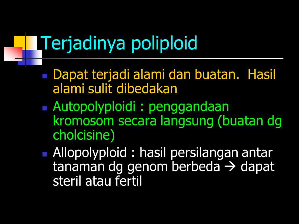 Terjadinya poliploid Dapat terjadi alami dan buatan.