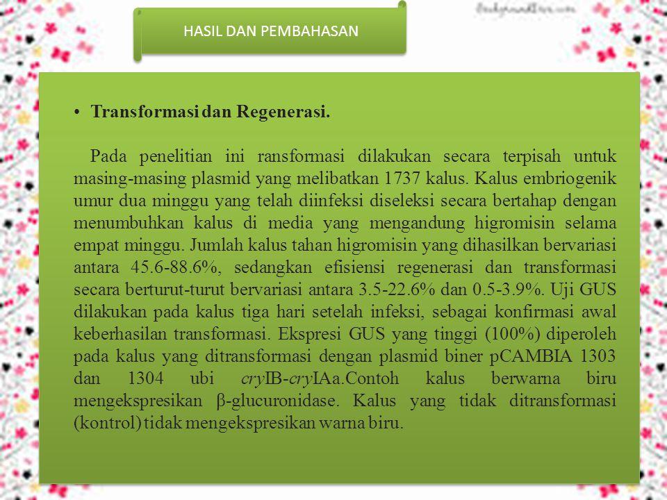 HASIL DAN PEMBAHASAN Transformasi dan Regenerasi.