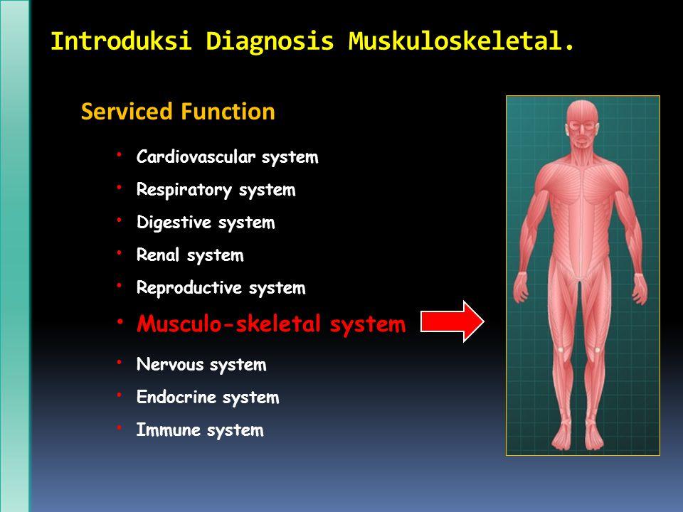 Introduksi Diagnosis Muskuloskeletal. Serviced Function Cardiovascular system Respiratory system Digestive system Renal system Reproductive system Mus