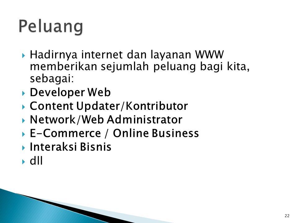 22  Hadirnya internet dan layanan WWW memberikan sejumlah peluang bagi kita, sebagai:  Developer Web  Content Updater/Kontributor  Network/Web Administrator  E-Commerce / Online Business  Interaksi Bisnis  dll