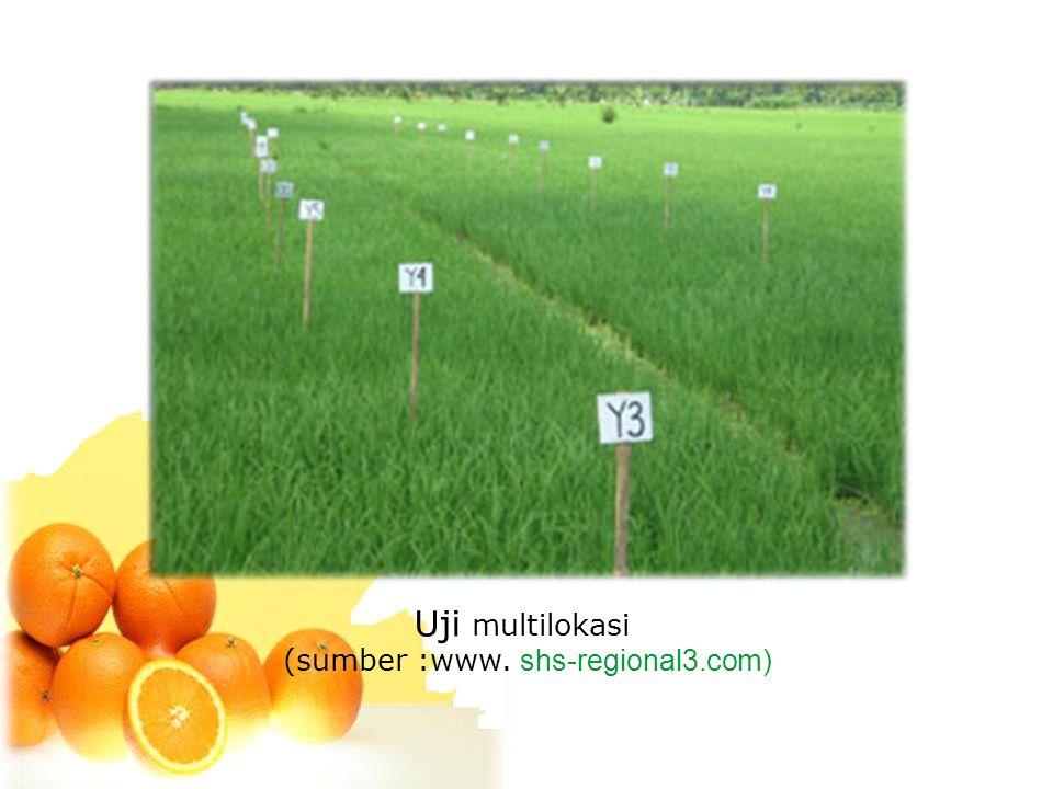 Uji multilokasi (sumber :www. shs-regional3.com)