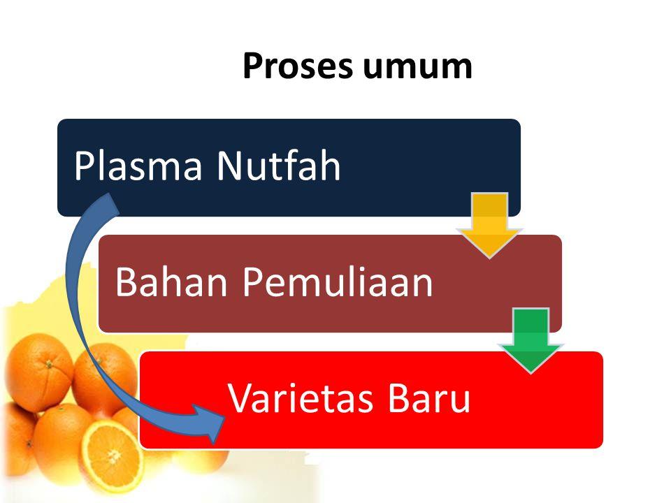Proses umum Plasma NutfahBahan Pemuliaan Varietas Baru