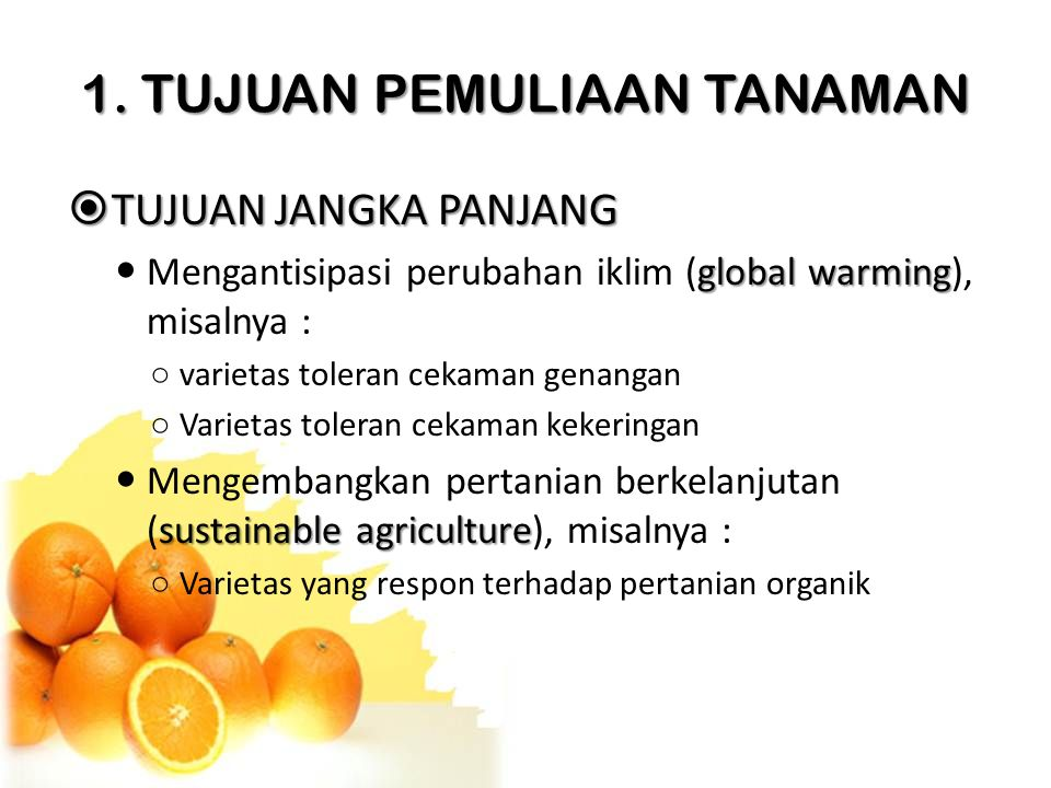 1. TUJUAN PEMULIAAN TANAMAN  TUJUAN JANGKA PANJANG global warming Mengantisipasi perubahan iklim (global warming), misalnya : ○ varietas toleran ceka