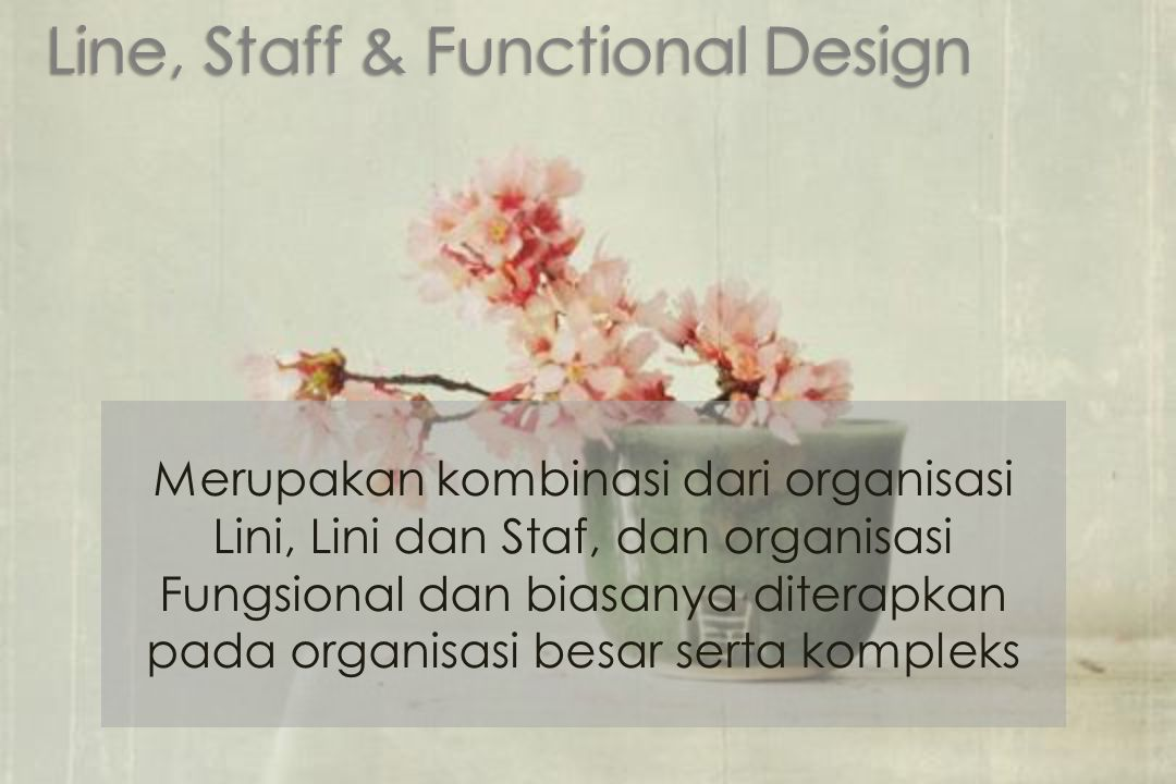 Line, Staff & Functional Design
