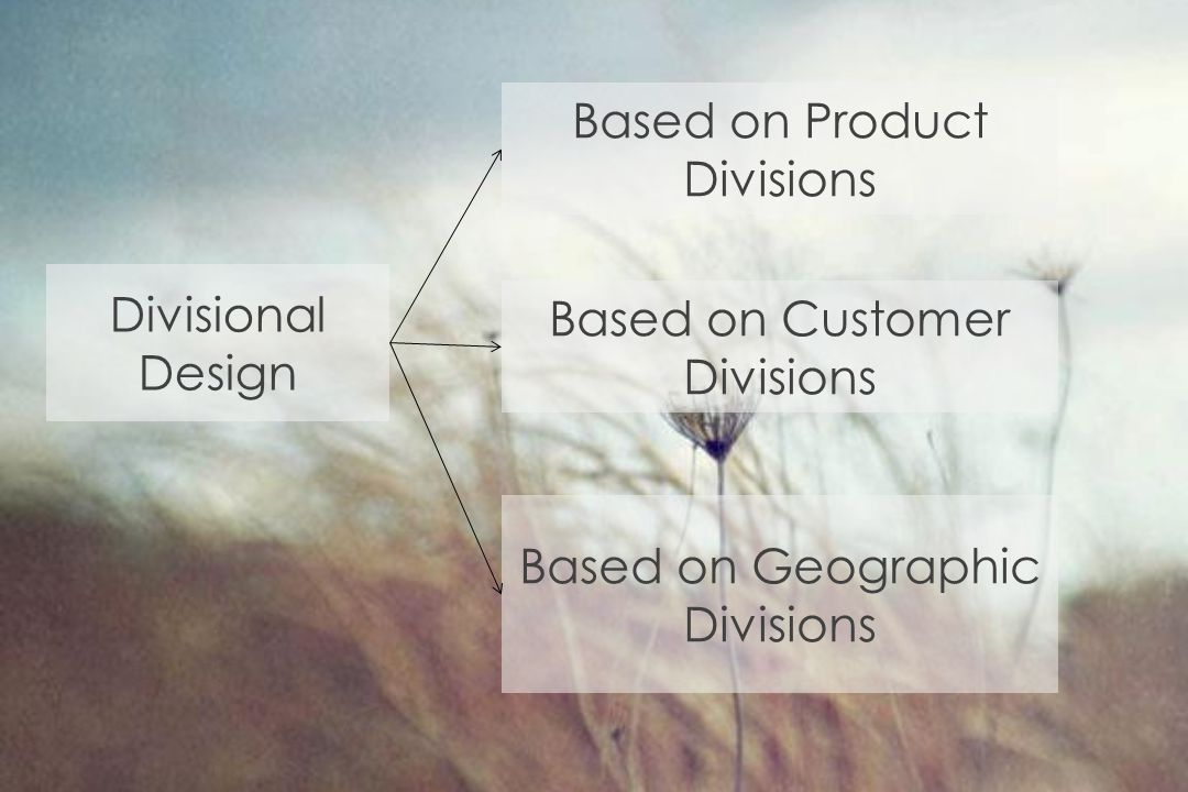 Divisional Design Based on Product Divisions Based on Customer Divisions Based on Geographic Divisions