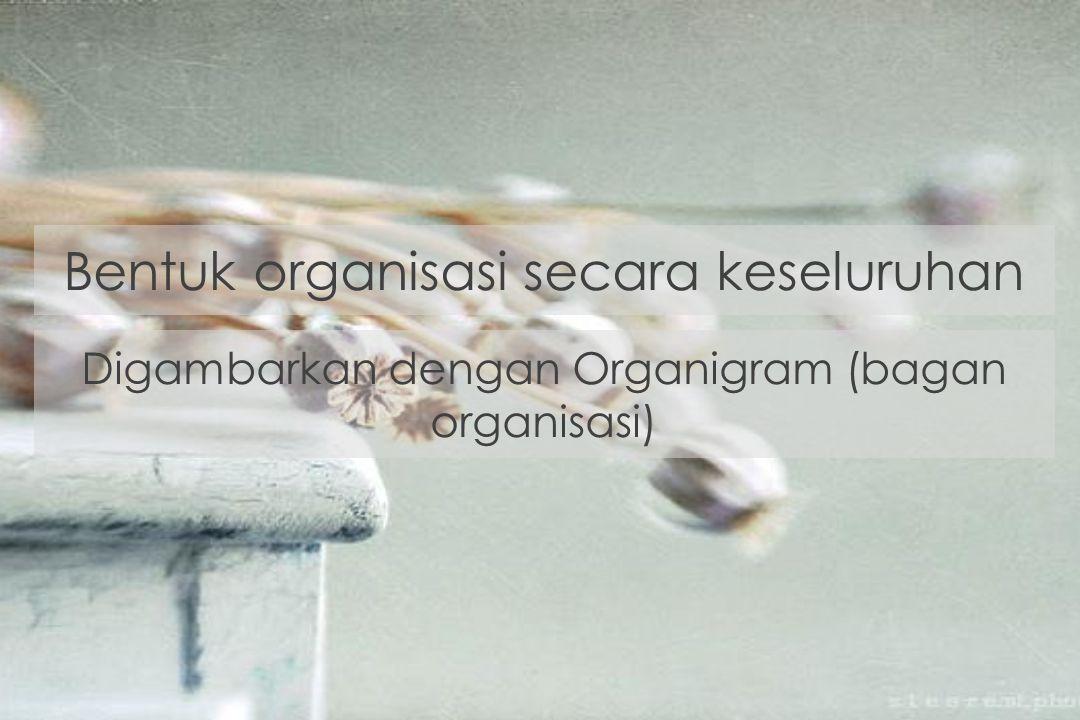 Bentuk organisasi secara keseluruhan Digambarkan dengan Organigram (bagan organisasi)