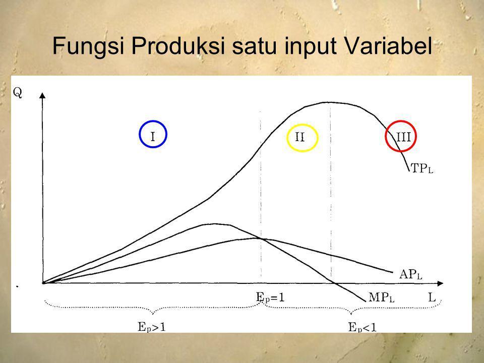 Fungsi Produksi satu input Variabel