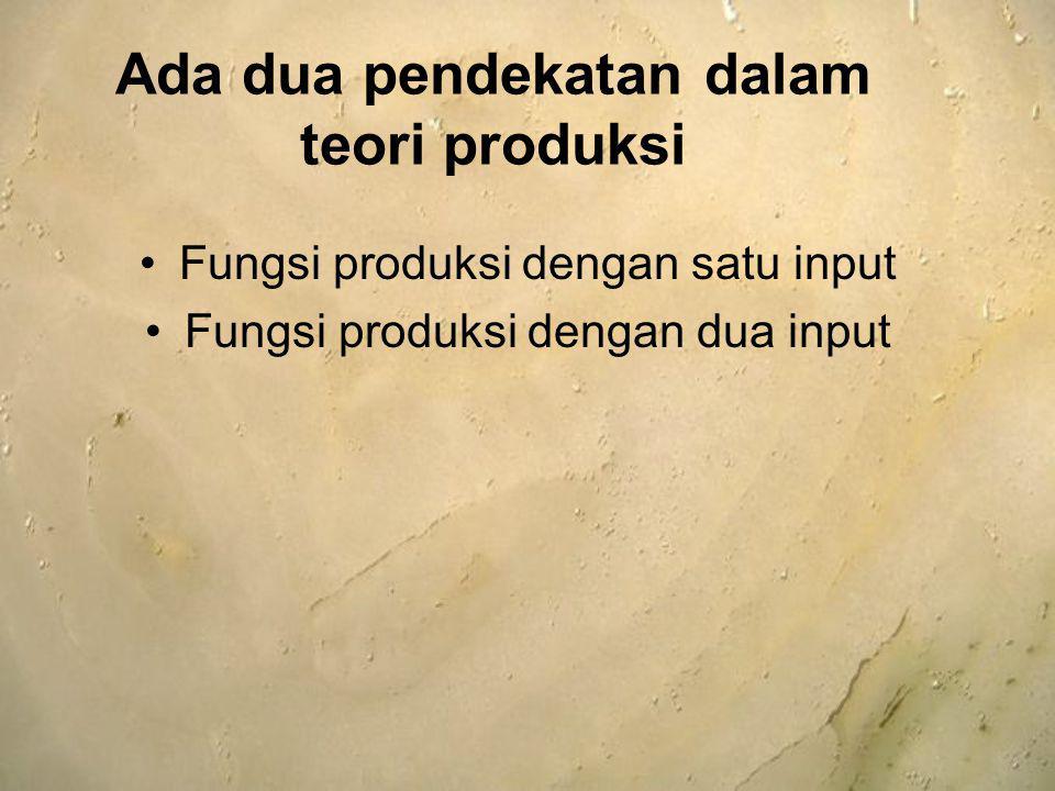 Ada dua pendekatan dalam teori produksi Fungsi produksi dengan satu input Fungsi produksi dengan dua input