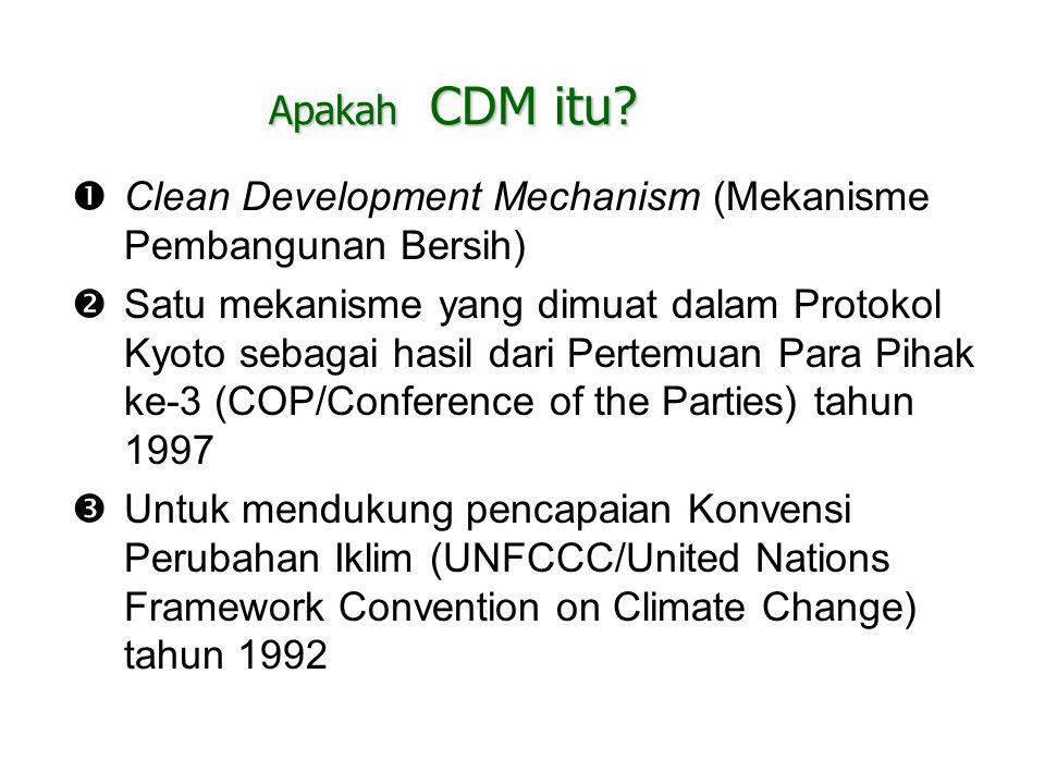 Apakah CDM itu?  Clean Development Mechanism (Mekanisme Pembangunan Bersih)  Satu mekanisme yang dimuat dalam Protokol Kyoto sebagai hasil dari Pert