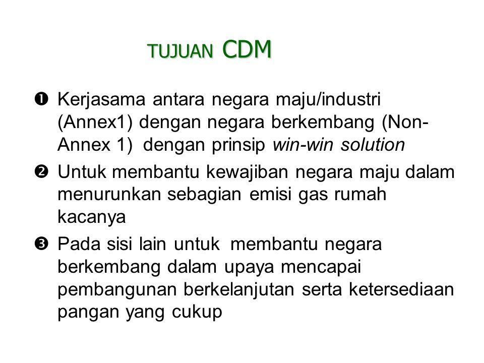 Peluang dan Pelaksanaan CDM di Indonesia?