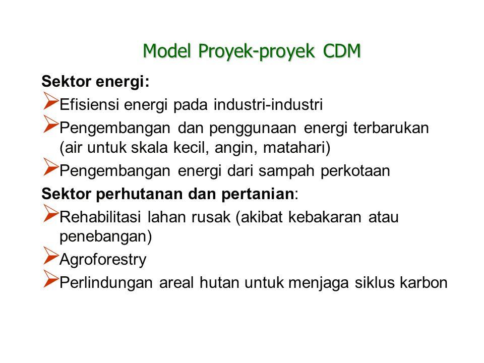 Model Proyek-proyek CDM Sektor energi:  Efisiensi energi pada industri-industri  Pengembangan dan penggunaan energi terbarukan (air untuk skala keci