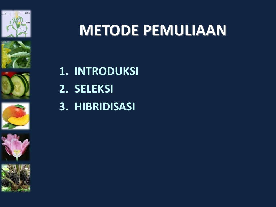 METODE PEMULIAAN 1.INTRODUKSI 2.SELEKSI 3.HIBRIDISASI