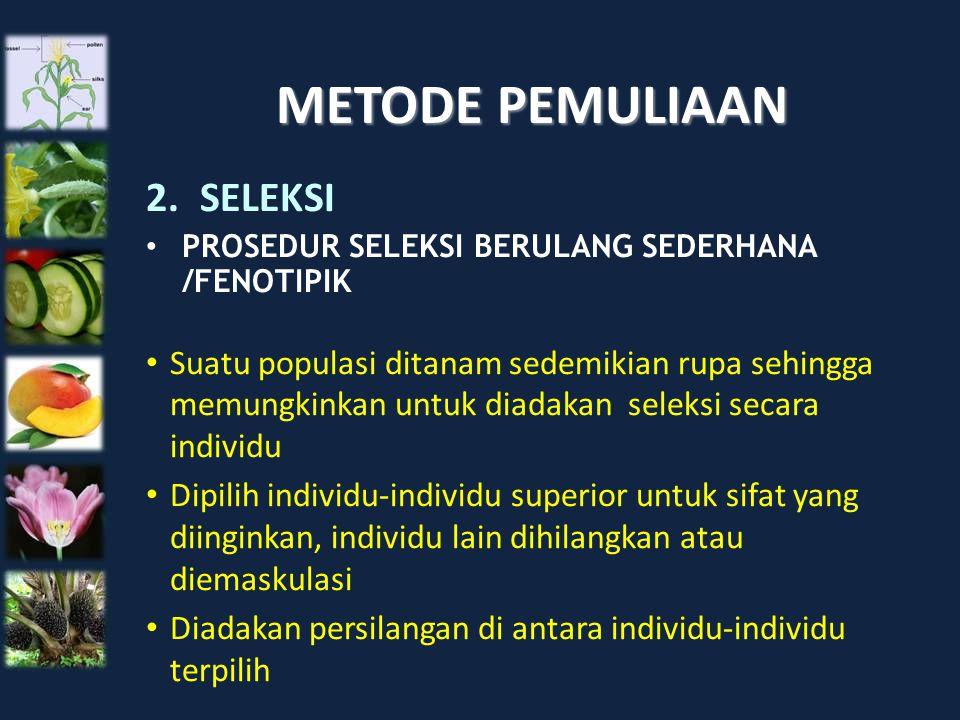 METODE PEMULIAAN 2.SELEKSI PROSEDUR SELEKSI BERULANG SEDERHANA /FENOTIPIK Suatu populasi ditanam sedemikian rupa sehingga memungkinkan untuk diadakan