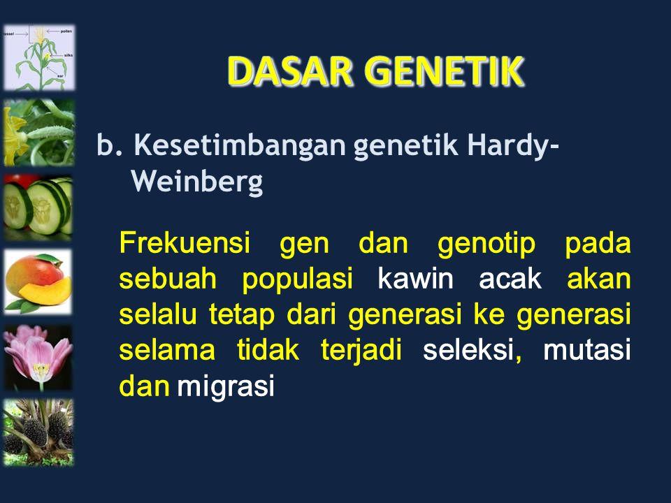 b. Kesetimbangan genetik Hardy- Weinberg Frekuensi gen dan genotip pada sebuah populasi kawin acak akan selalu tetap dari generasi ke generasi selama