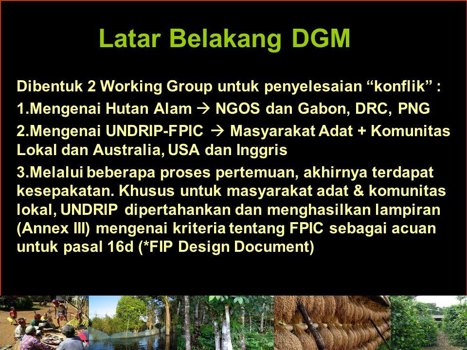 Latar Belakang DGM Dibentuk 2 Working Group untuk penyelesaian konflik : 1.Mengenai Hutan Alam  NGOS dan Gabon, DRC, PNG 2.Mengenai UNDRIP-FPIC  Masyarakat Adat + Komunitas Lokal dan Australia, USA dan Inggris 3.Melalui beberapa proses pertemuan, akhirnya terdapat kesepakatan.