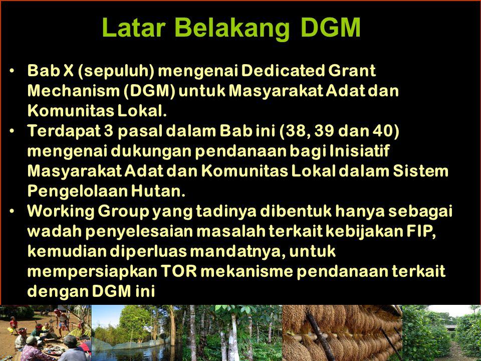Latar Belakang DGM Bab X (sepuluh) mengenai Dedicated Grant Mechanism (DGM) untuk Masyarakat Adat dan Komunitas Lokal.
