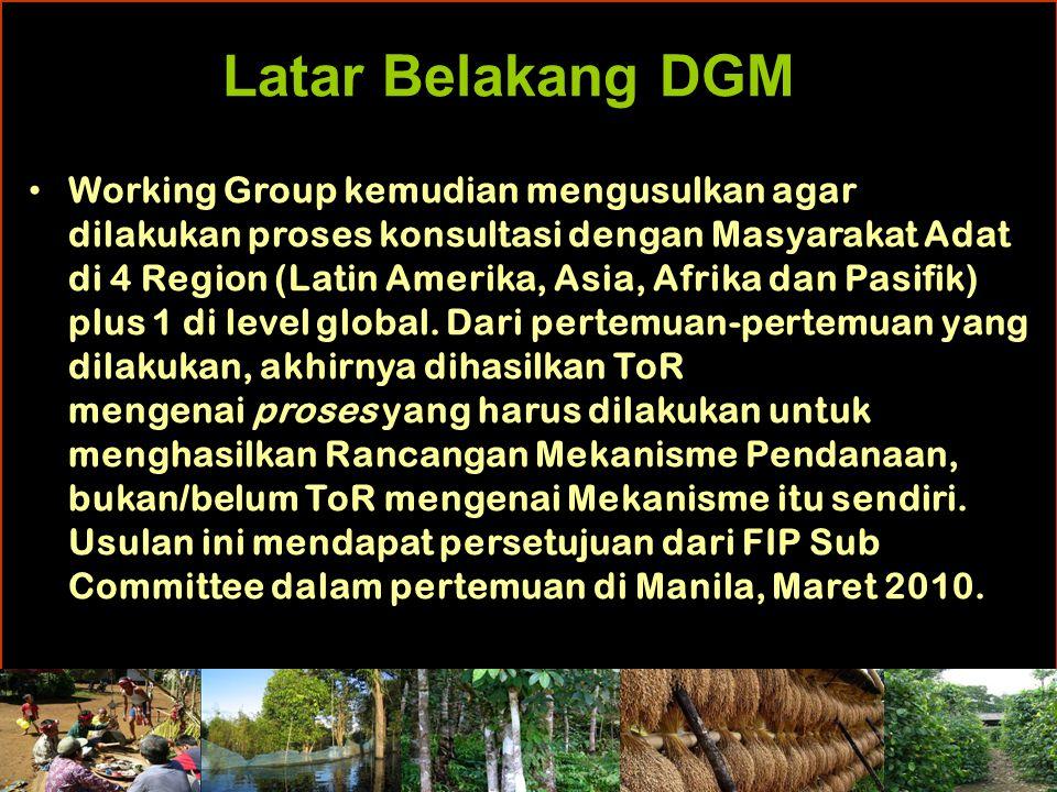 Latar Belakang DGM Working Group kemudian mengusulkan agar dilakukan proses konsultasi dengan Masyarakat Adat di 4 Region (Latin Amerika, Asia, Afrika dan Pasifik) plus 1 di level global.