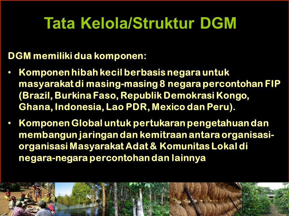 Tata Kelola/Struktur DGM DGM memiliki dua komponen: Komponen hibah kecil berbasis negara untuk masyarakat di masing-masing 8 negara percontohan FIP (Brazil, Burkina Faso, Republik Demokrasi Kongo, Ghana, Indonesia, Lao PDR, Mexico dan Peru).