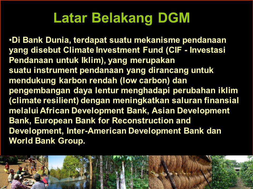 Alokasi DGM FIP SC menyetujui alokasi sejumlah US$50 juta dalam bentuk sumber daya hibah kepada DGM dengan distribusi sebagai berikut: Brazil dan Indonesia, masing-masing $6,500,000 DRC dan Mexico, masing-masing $6,000,000 Ghana dan Peru, masing-masing $5,500,000 Burkina Faso dan LAO PDR, masing-masing $4,500,000 Komponen global $5,000,000