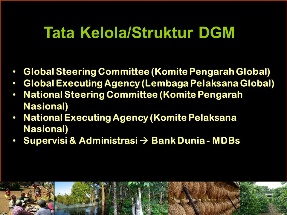 Tata Kelola/Struktur DGM Global Steering Committee (Komite Pengarah Global) Global Executing Agency (Lembaga Pelaksana Global) National Steering Commi