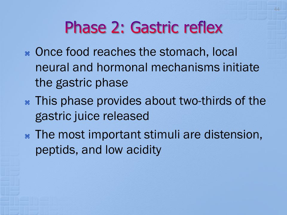  Once food reaches the stomach, local neural and hormonal mechanisms initiate the gastric phase  This phase provides about two-thirds of the gastric