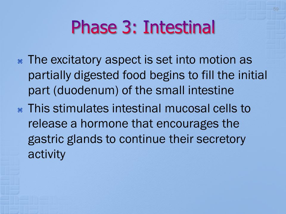  The excitatory aspect is set into motion as partially digested food begins to fill the initial part (duodenum) of the small intestine  This stimula