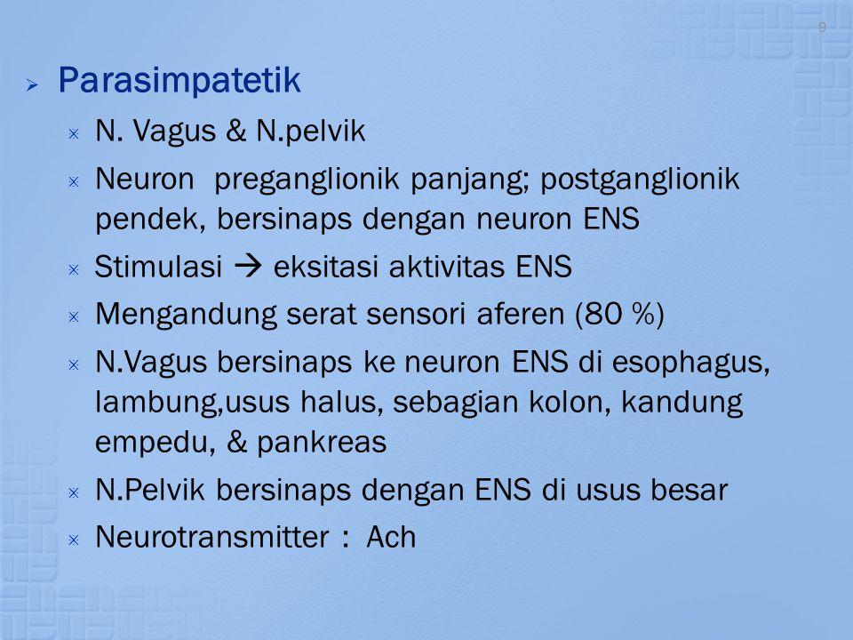 9  Parasimpatetik  N. Vagus & N.pelvik  Neuron preganglionik panjang; postganglionik pendek, bersinaps dengan neuron ENS  Stimulasi  eksitasi akt
