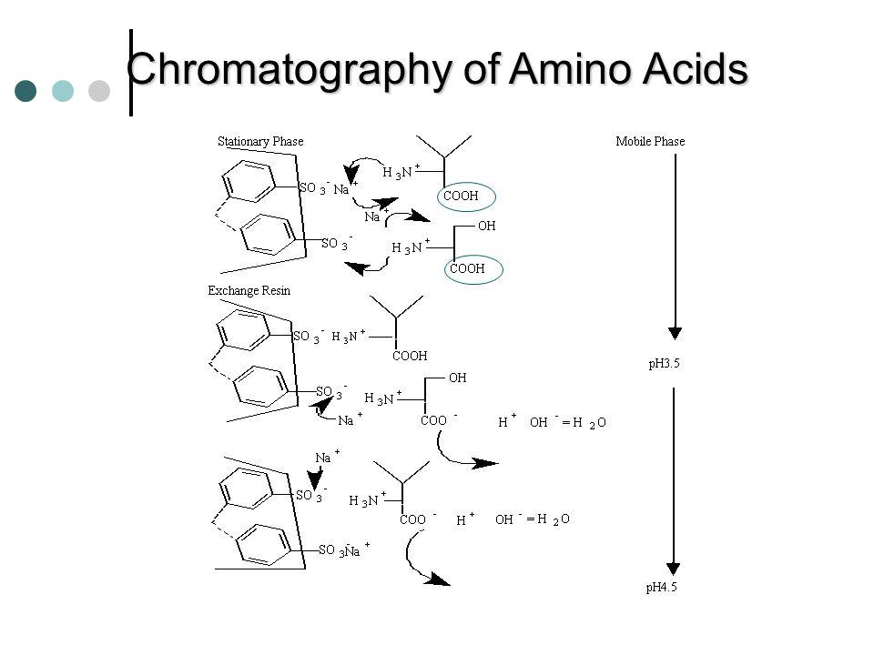 MECHANISM OF ION-EXCHANGE CHROMATOGRAPHY OF AMINO ACIDS SO 3 - 3 - Na + COO - H 3 N + Na + COOH H 3 N + pH2 pH4.5 Ion-exchange Resin