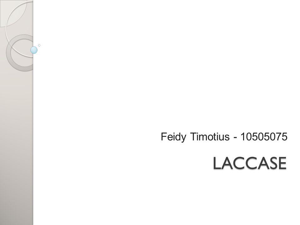LACCASE Feidy Timotius - 10505075