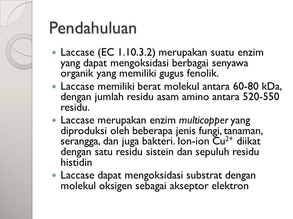 Pendahuluan Laccase (EC 1.10.3.2) merupakan suatu enzim yang dapat mengoksidasi berbagai senyawa organik yang memiliki gugus fenolik. Laccase memiliki