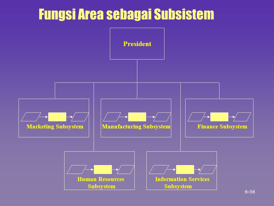 Marketing Subsystem Manufacturing Subsystem Finance Subsystem President Fungsi Area sebagai Subsistem Human Resources Subsystem Information Services S