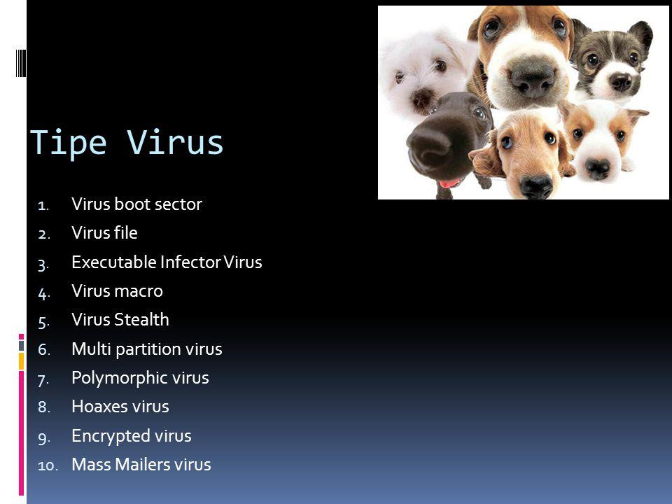 Tipe Virus 1. Virus boot sector 2. Virus file 3. Executable Infector Virus 4. Virus macro 5. Virus Stealth 6. Multi partition virus 7. Polymorphic vir