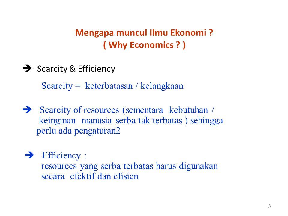 Persoalan diatas akan selalu muncul baik pada : Level individu Level perusahaan / organisasi Level sektor- sektor kegiatan / ekonomi Level lokal – regional – Nasional & global 4