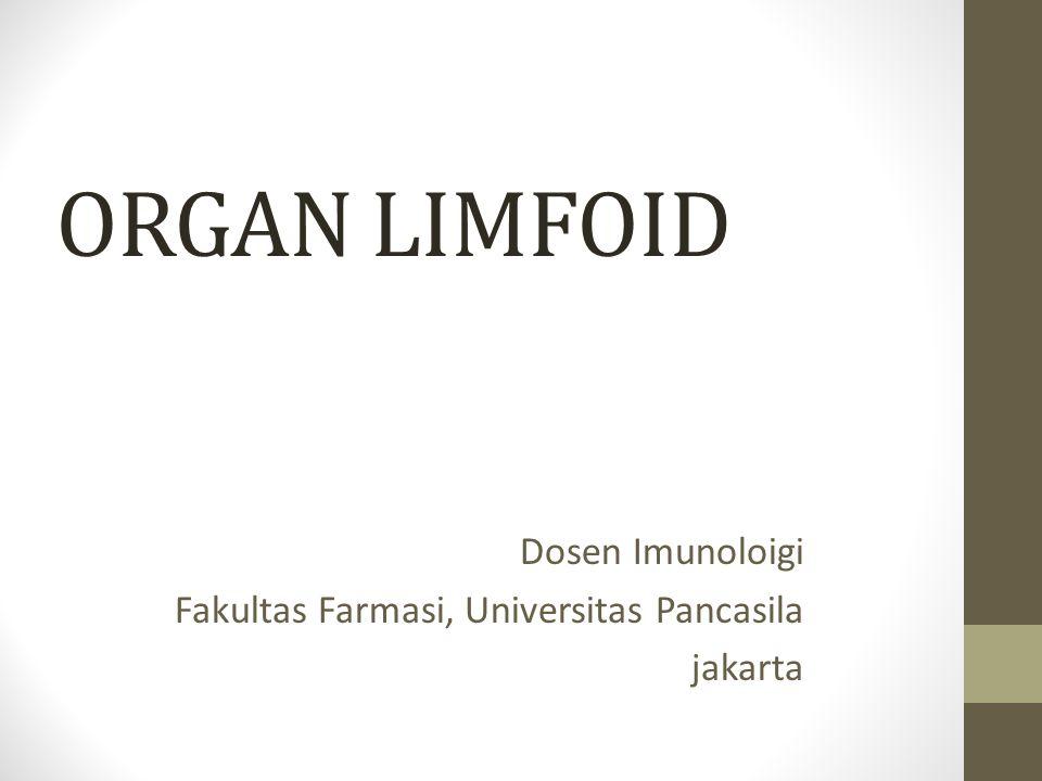 ORGAN LIMFOID Dosen Imunoloigi Fakultas Farmasi, Universitas Pancasila jakarta