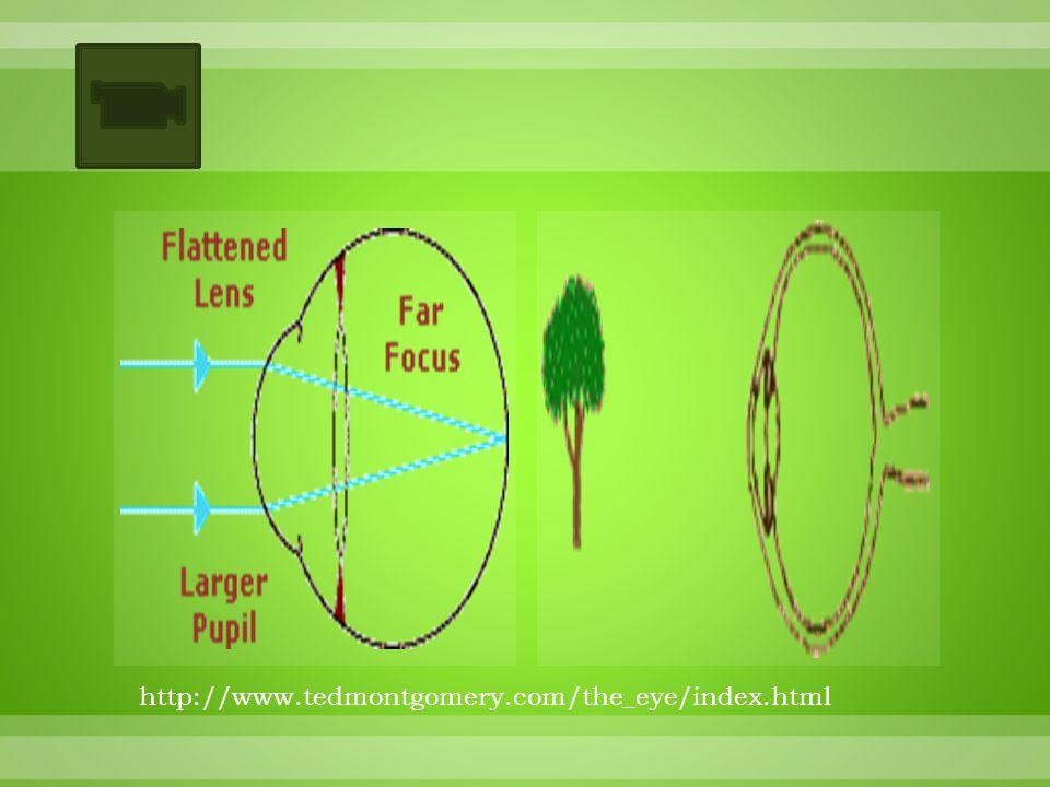 http://www.tedmontgomery.com/the_eye/index.html