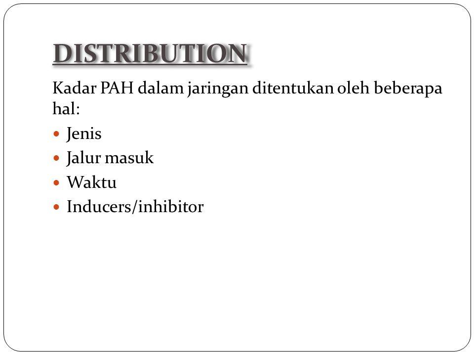 Kadar PAH dalam jaringan ditentukan oleh beberapa hal: Jenis Jalur masuk Waktu Inducers/inhibitor DISTRIBUTION