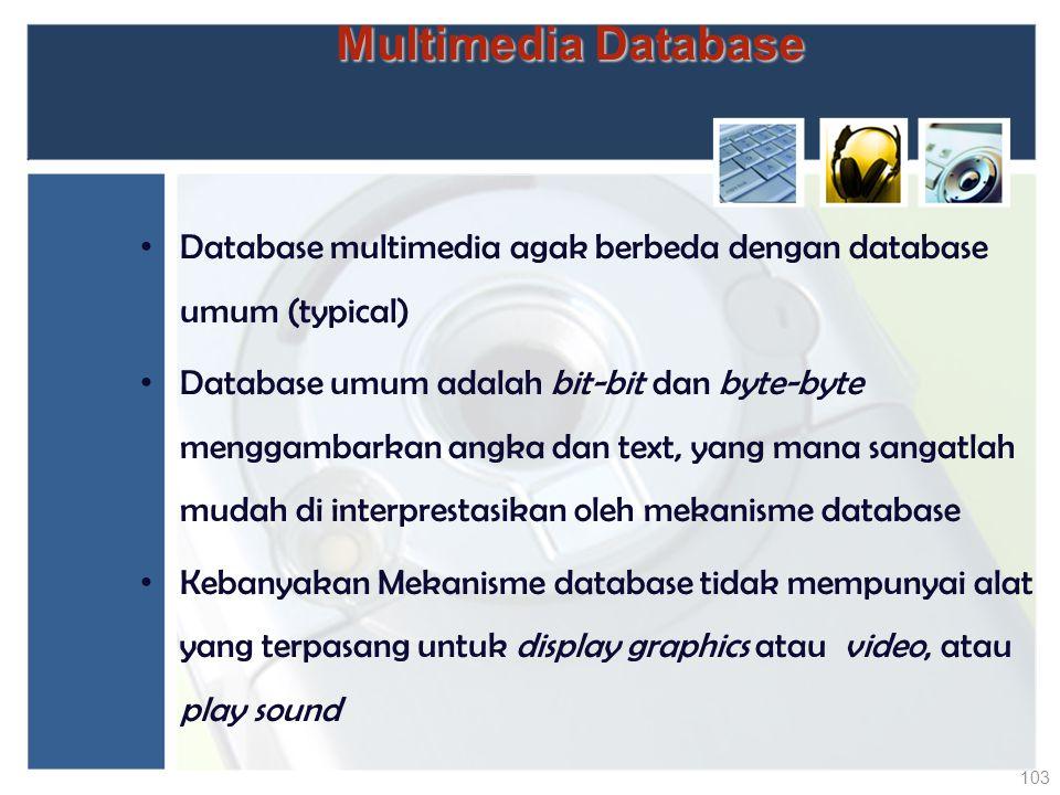 Database multimedia agak berbeda dengan database umum (typical) Database umum adalah bit-bit dan byte-byte menggambarkan angka dan text, yang mana san
