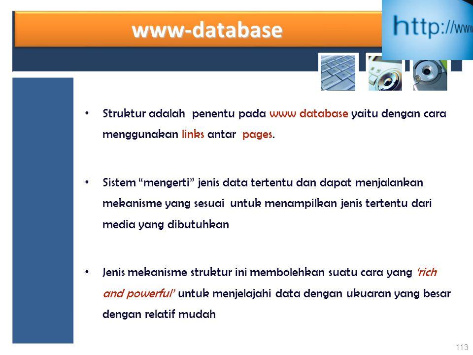 """www-databasewww-database Struktur adalah penentu pada www database yaitu dengan cara menggunakan links antar pages. Sistem """"mengerti"""" jenis data terte"""
